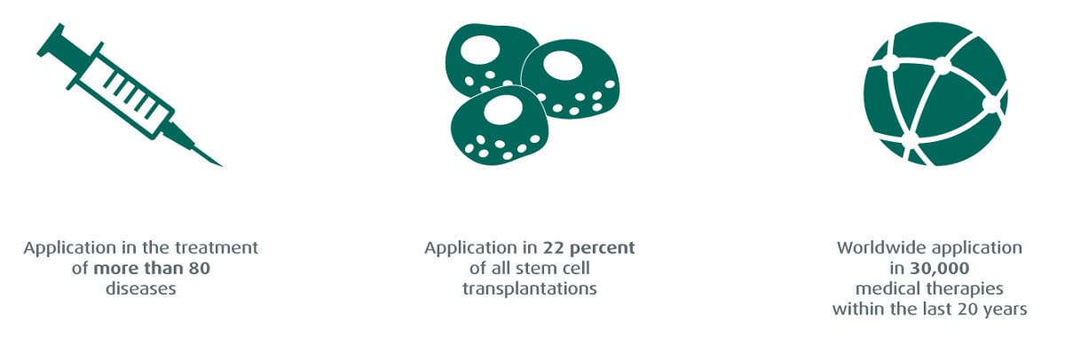 Application of stem cells » Vita 34
